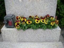 Grabsteinreinigung, Grabpflege